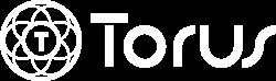 Torus Records